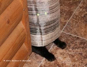 Gruff in hiding