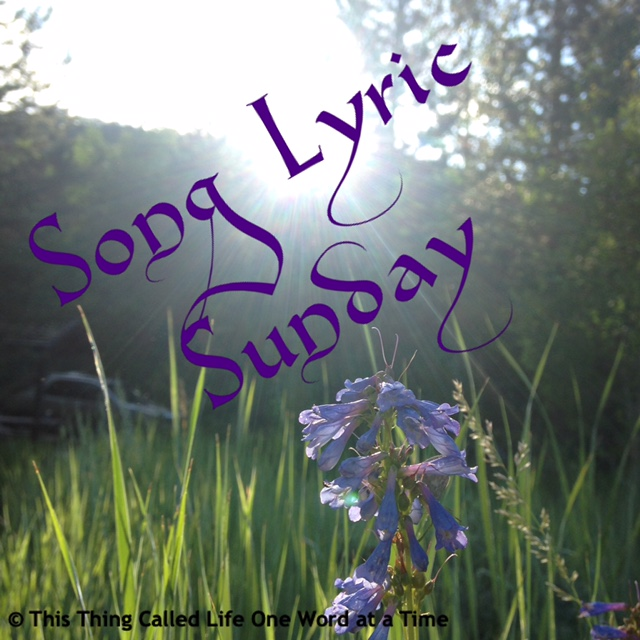 Song lyric sunday theme for 8518 this thing called life one word img1345 mightylinksfo